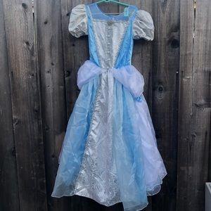 Cinderella holloween custum kids Large